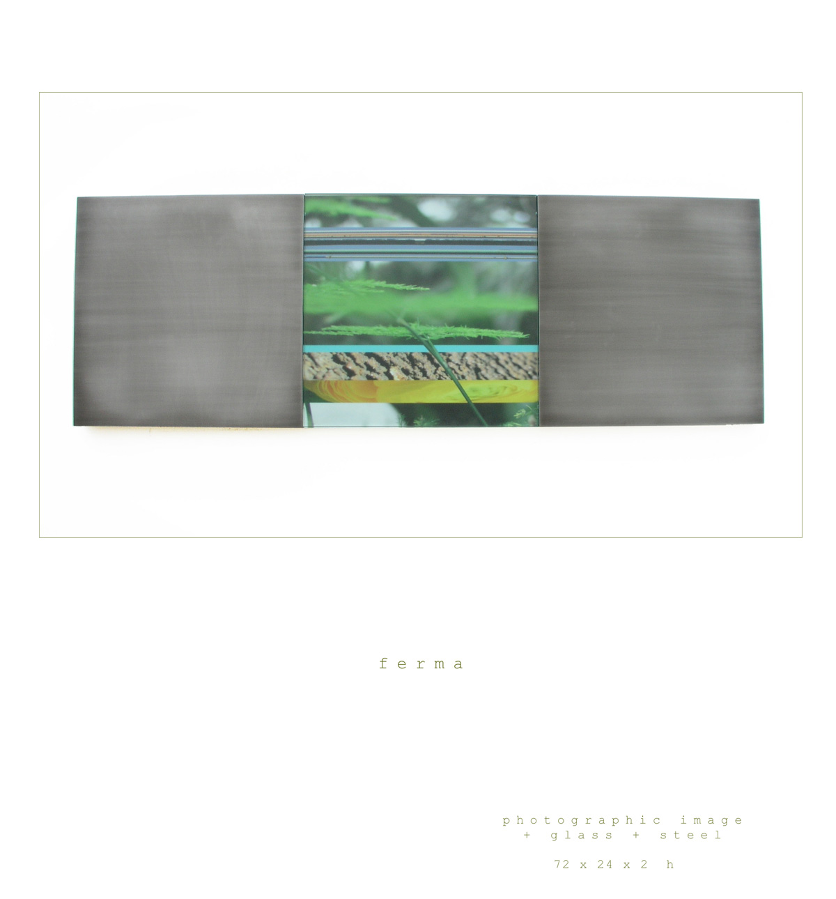 The art piece Ferma is a wall sculpture made out of a photographic image, steel and glass measuring 72 x 24 x 2 inches h made by Chad Manley